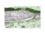 Mountain Strip Mine Landscape No. 9