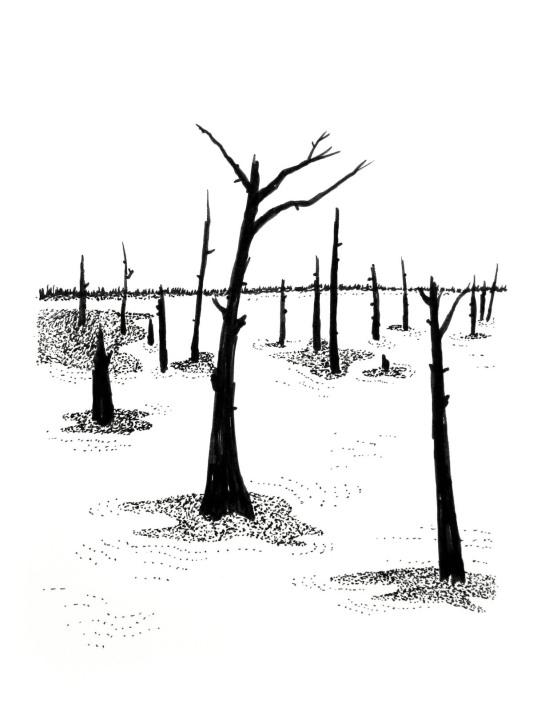 Swamp/Marsh Landscape No. 5