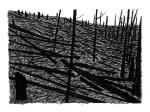 Swamp/Marsh Landscape No. 9