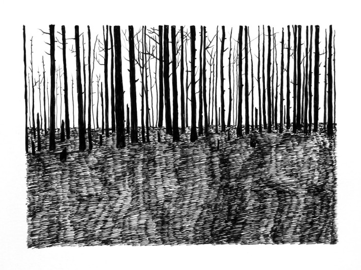 Swamp/Marsh Landscape No. 12