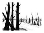 Swamp/Marsh Landscape No. 14