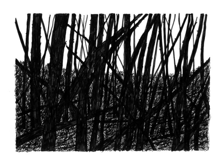 Swamp/Marsh Landscape No. 16