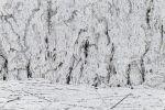 Arctic Landscapes: Arctic Shoreline